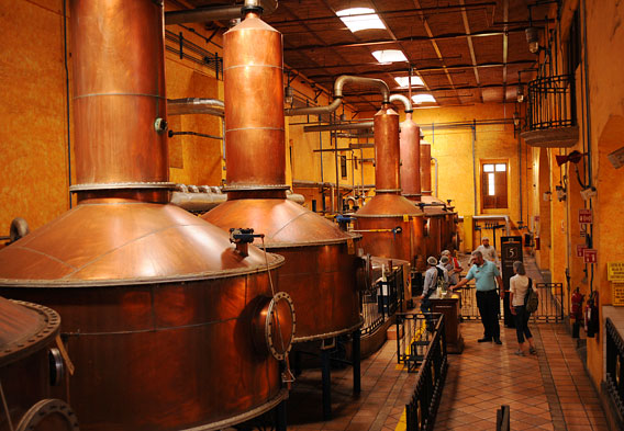Jose Cuervo Distillery - Distillation